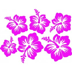 planche stickers fleur hawaienne